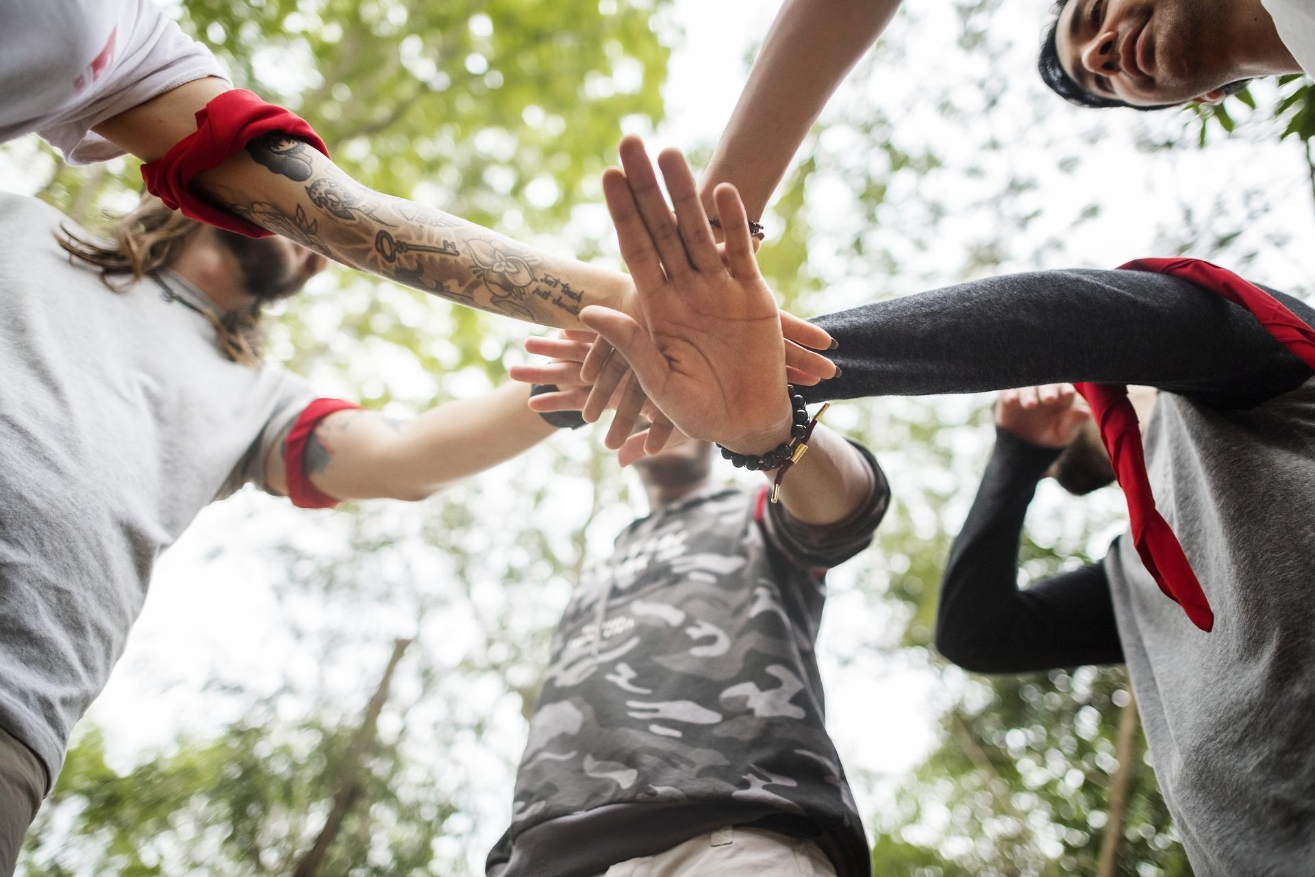 WALDLIFE David Cornette - Programm Teambuidling